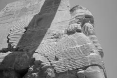 Iran - Persepolis - Chiraz - Bandar Abbas 30