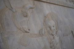 Iran - Persepolis - Chiraz - Bandar Abbas 9
