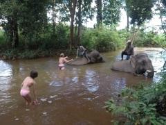 Elephant et Chez Franck 6