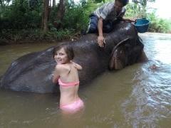 Elephant et Chez Franck 7