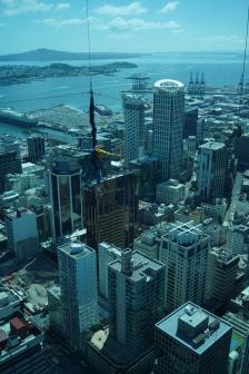 12 - NZ Auckland