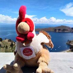 Bolivie - Lac Titicaca - 4000 m
