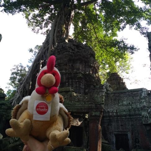 Cambodia - Siem Reap 2