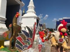 Thailand - Chiangmai 2