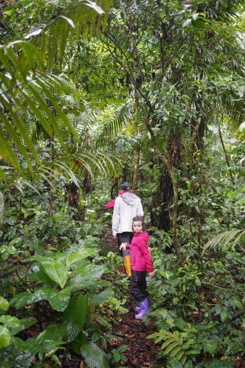 126 Equateur Amazonie