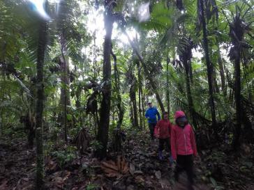 139 Equateur Amazonie