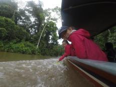 142 Equateur Amazonie
