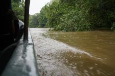 149 Equateur Amazonie