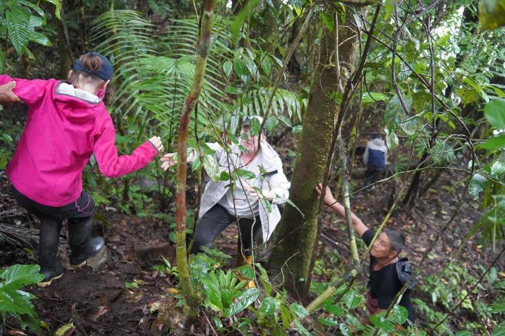 154 Equateur Amazonie