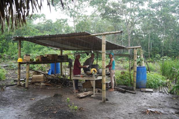 205 Equateur Amazonie