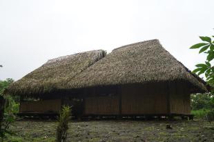 233 Equateur Amazonie