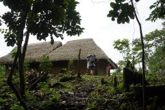 70 Equateur Amazonie