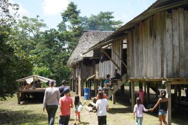 72 Equateur Amazonie