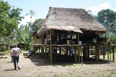 73 Equateur Amazonie