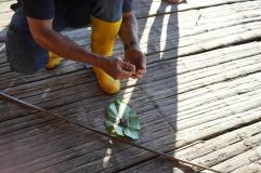 83 Equateur Amazonie