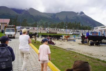 282 Equateur Otovalo